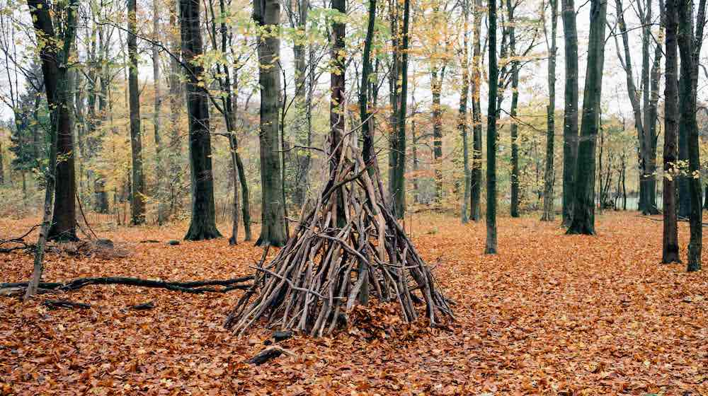 Critical Points You Need To Know About Building Any Natural Shelter