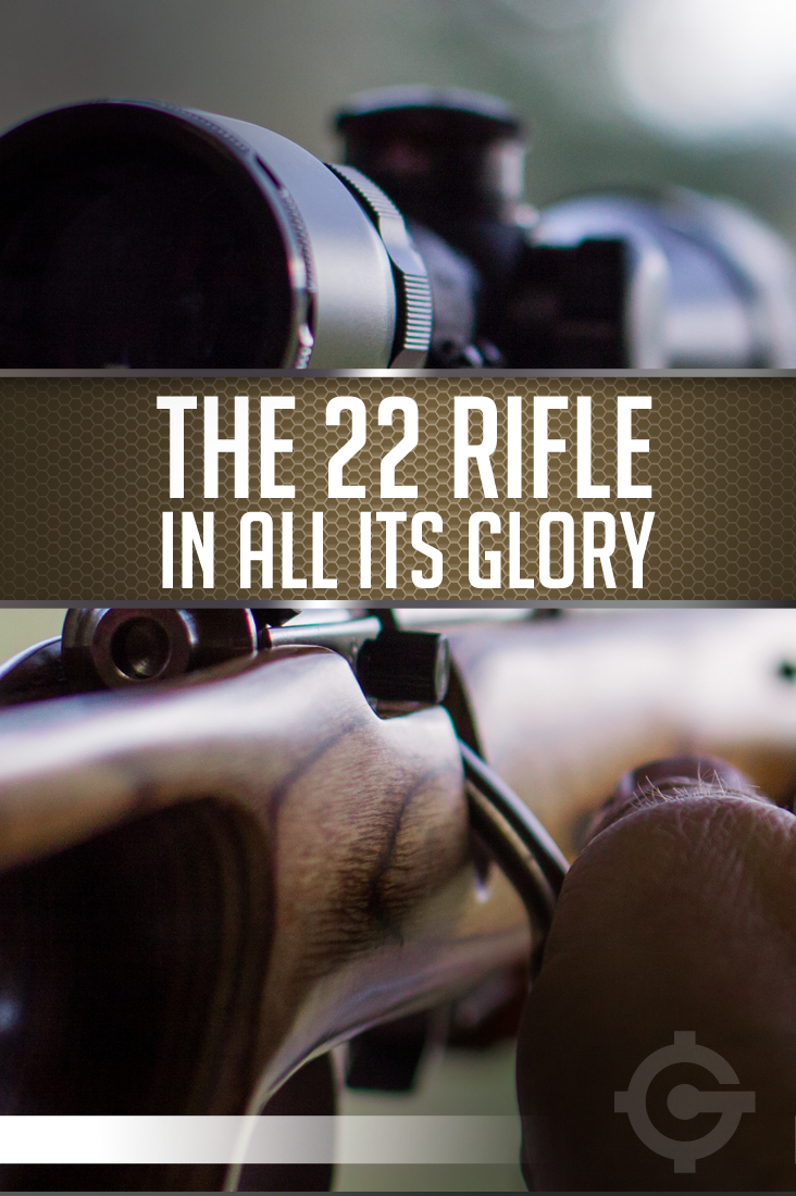 The 22 Rifle In All Its Glory | https://guncarrier.com/22-rifle-glory/
