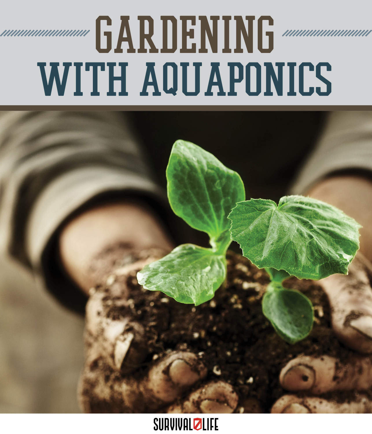 Make A (Nearly) Self-Sufficient Indoor Garden With Aquaponics by Survival Life at http://survivallife.staging.wpengine.com/2015/04/30/aquaponics-indoor-garden/