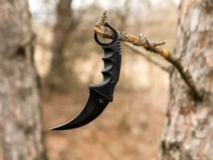 Karambit knife hanging on the branch in the autumn forest | What Are The Uses Of Karambit Knives? | Featured