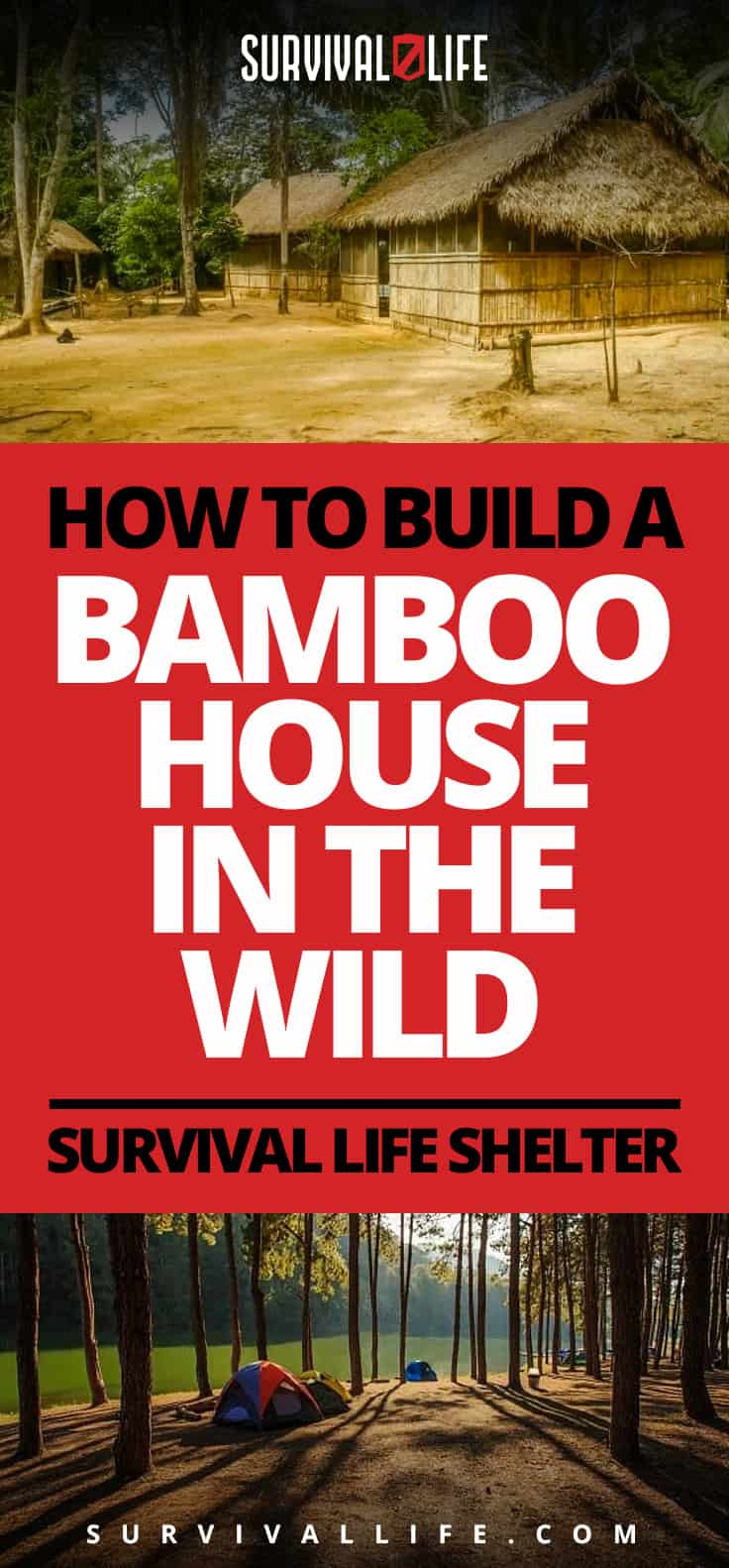 Infographic   modern bamboo house