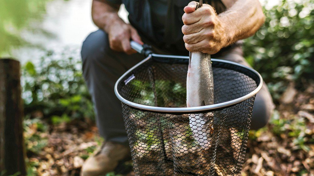 Feature | Survival Fishing | Unconventional Methods To Catch Fish