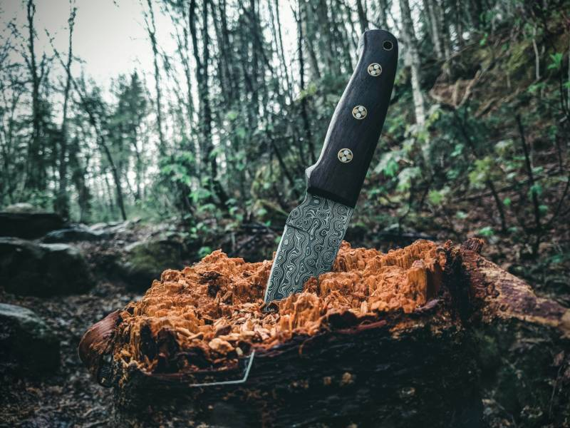 black handled knife on brown log | California Knife Laws