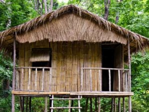 little hut jungle | How To Build A Bamboo House In The Wild | Survival Life Shelter | featured