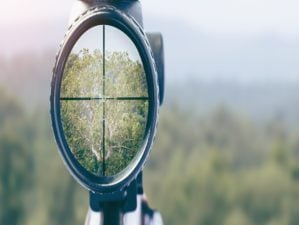 A Hunter's Guide How to Sight in Your Scope