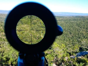 looking through a scope | 3 Best Long Range Scopes For Rifles You Should Try