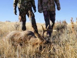two hunter find their shot | What Is A Muzzleloader And Why Should You Use It For Hunting | Featured