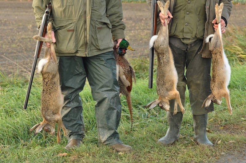 Hunters with Catch: Hare, Duck and Pheasant in hand | varmint hunting magazine