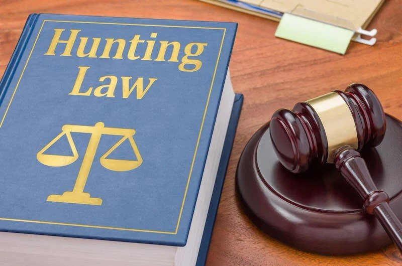 A law book with a gavel | turkey hunting gear for beginners