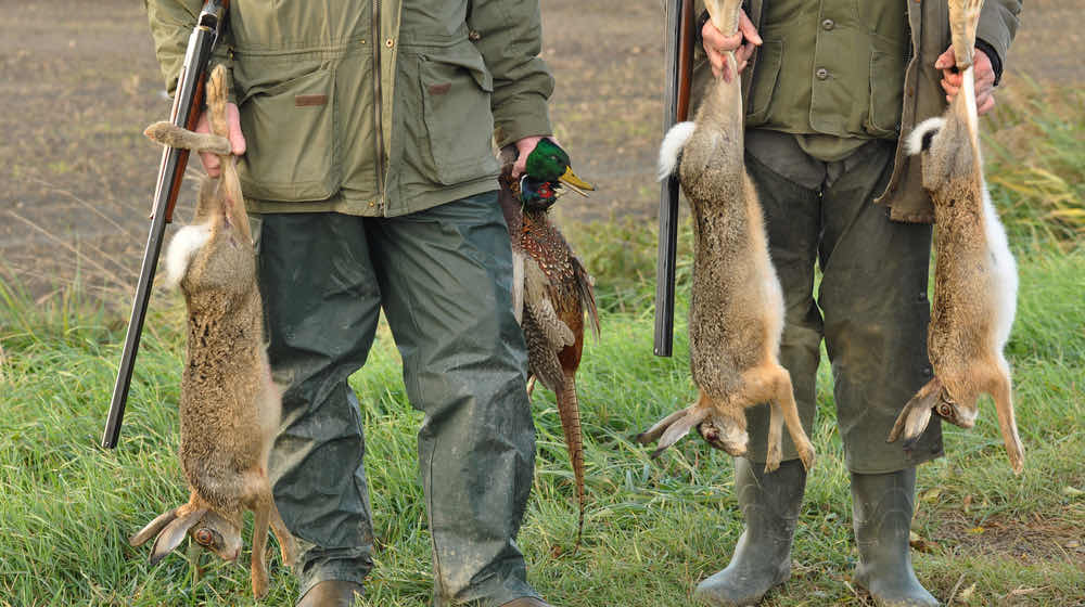 Hunters with Catch- Hare | Rabbit Hunting Tips For Beginners | featured