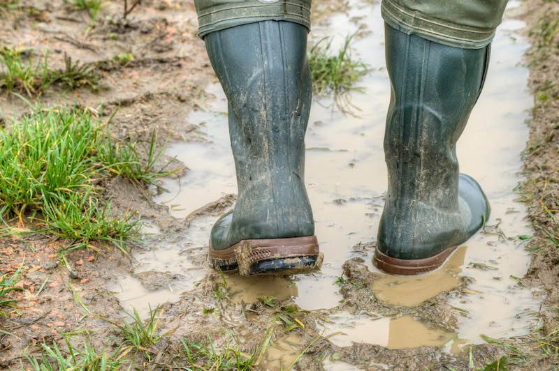 With rubber boots through the mud | minnesota turkey hunting tips