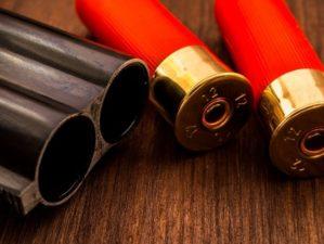 Double-barreled shotgun barrel | Best Home Defense Shotgun Ammo | Featured